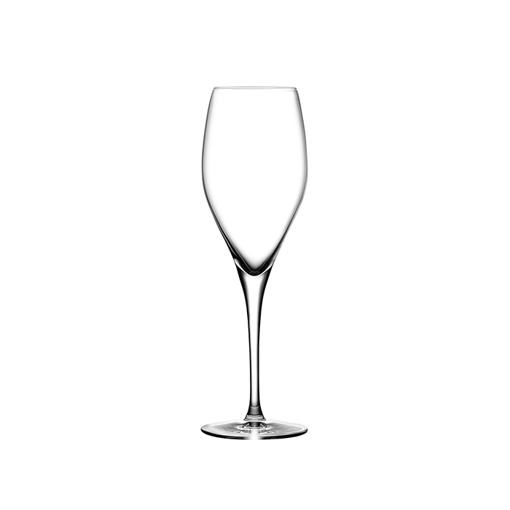 Picture of Nude Vintage Champagne Glass set