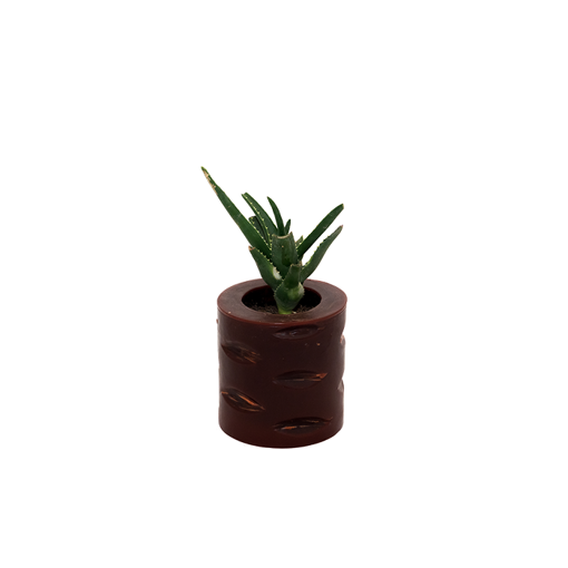 Picture of Mahy's Candles Brown Bites Plant Pot (Made out of Wax)